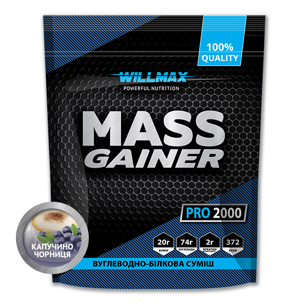 Гейнер Willmax  Mass Gainer 2кг Капучино-Черника